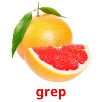 grep picture flashcards