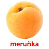 meruňka picture flashcards