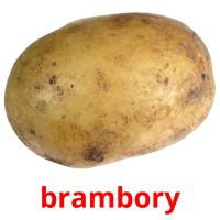 brambory picture flashcards
