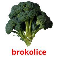 brokolice picture flashcards