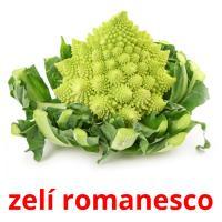 zelí romanesco picture flashcards
