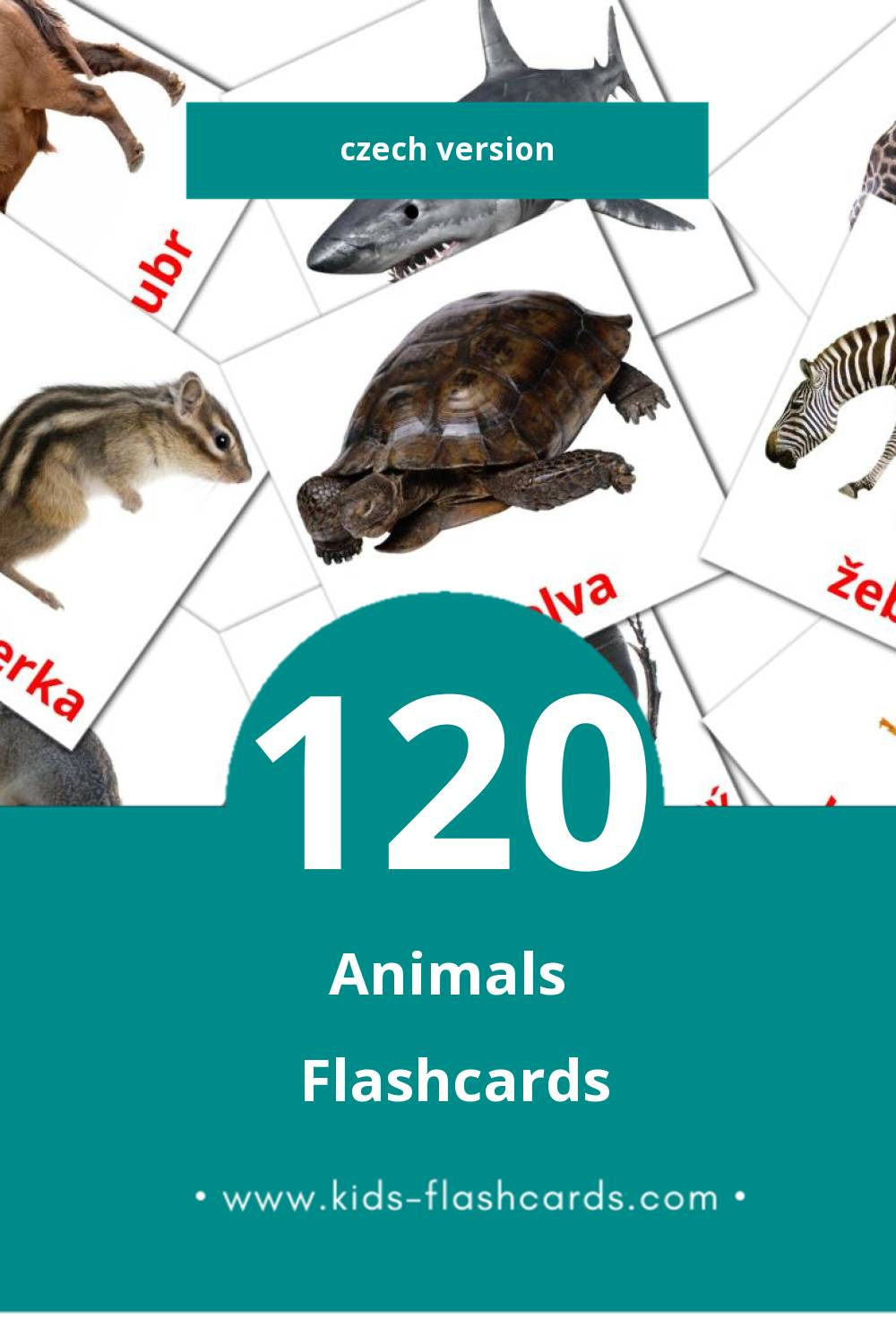 Visual Zvířata Flashcards for Toddlers (98 cards in Czech)