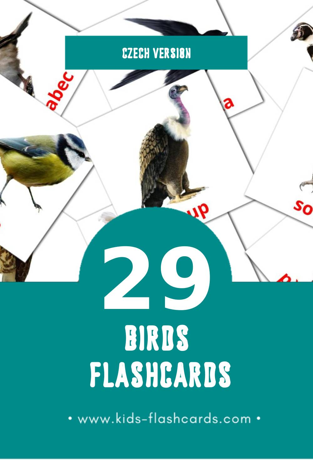 Visual ptáci Flashcards for Toddlers (29 cards in Czech)