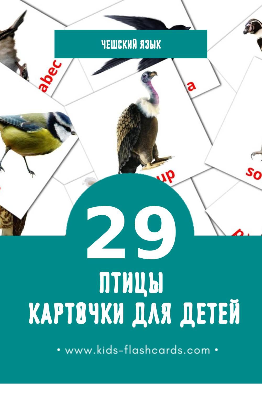 """""""ptáci"""" - Визуальный Чешском Словарь для Малышей (29 картинок)"""
