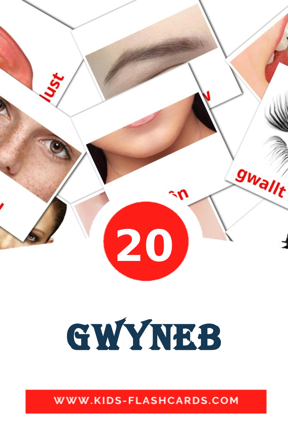 20 Gwyneb Picture Cards for Kindergarden in welsh