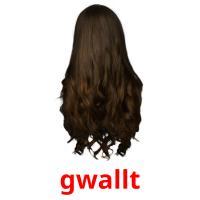 gwallt picture flashcards