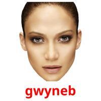 gwyneb picture flashcards