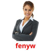 fenyw picture flashcards