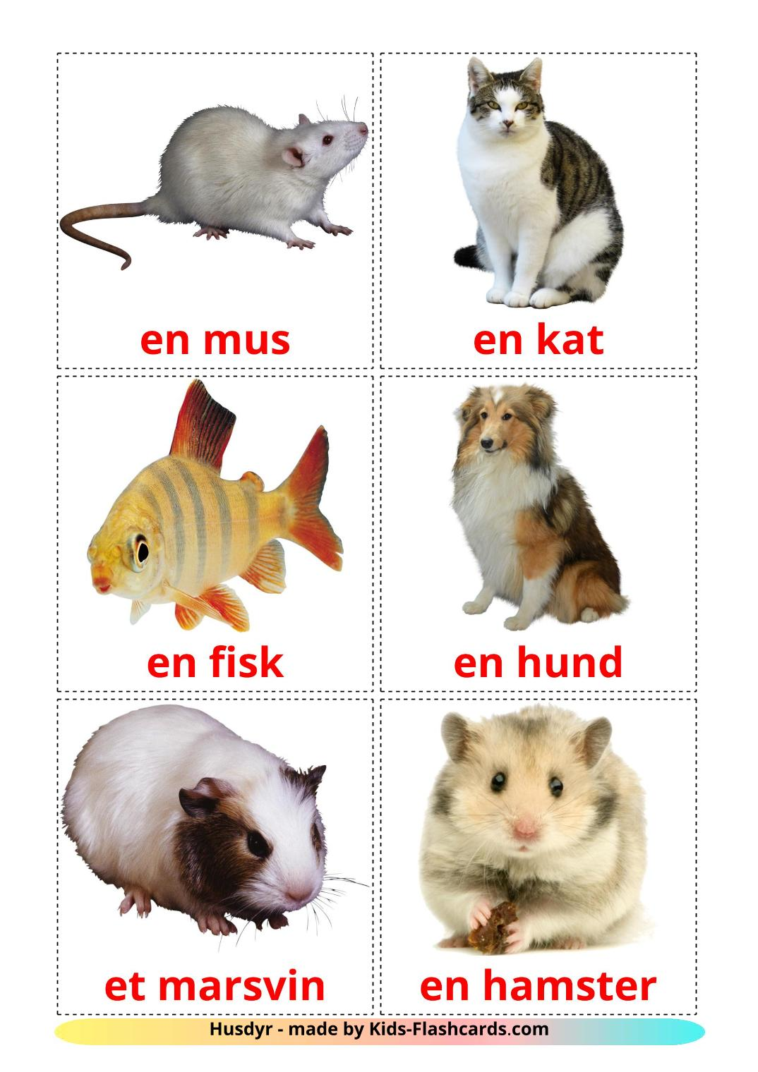 Domestic animals - 10 Free Printable dansk Flashcards