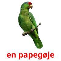 en papegøje picture flashcards