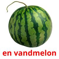 en vandmelon picture flashcards