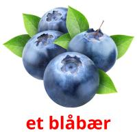 et blåbær picture flashcards