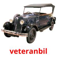 veteranbil picture flashcards
