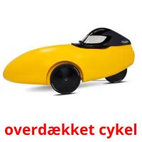 overdækket cykel picture flashcards
