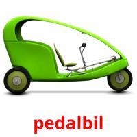 pedalbil picture flashcards