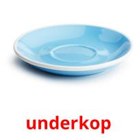 underkop picture flashcards
