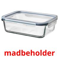 madbeholder picture flashcards