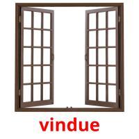 vindue picture flashcards