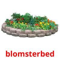 blomsterbed picture flashcards