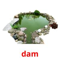 dam picture flashcards