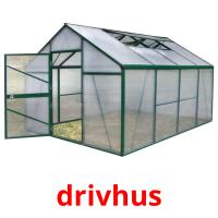 drivhus picture flashcards