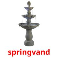 springvand picture flashcards