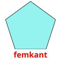 femkant picture flashcards