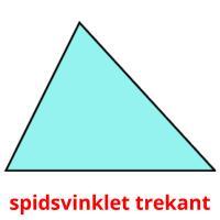 spidsvinklet trekant picture flashcards