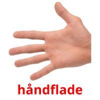 håndflade picture flashcards