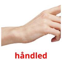 håndled picture flashcards
