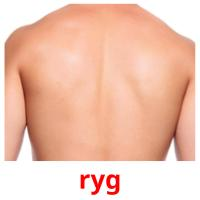 ryg picture flashcards