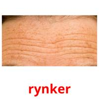 rynker picture flashcards