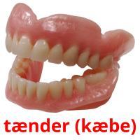tænder (kæbe) picture flashcards