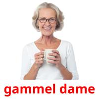 gammel dame picture flashcards