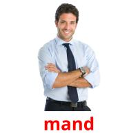 mand picture flashcards