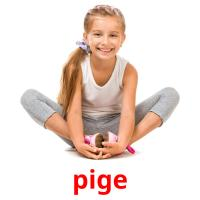 pige picture flashcards