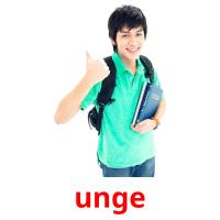 unge picture flashcards
