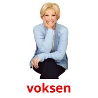 voksen picture flashcards