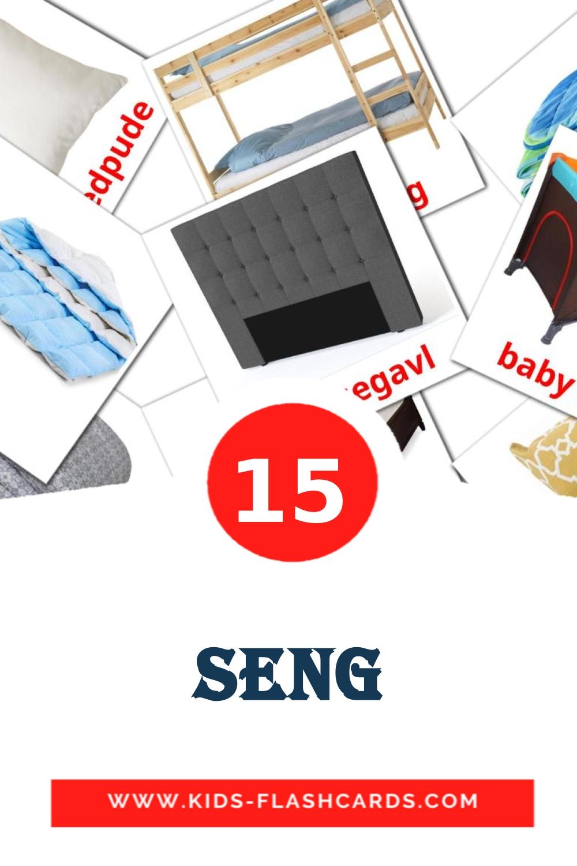15 Seng Picture Cards for Kindergarden in dansk