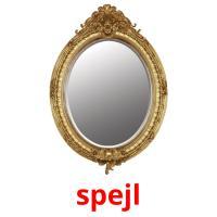 spejl picture flashcards