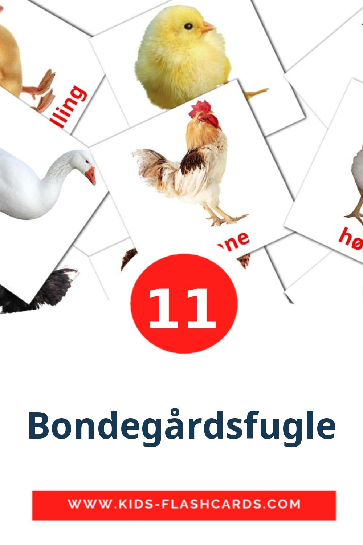 11 Bondegårdsfugle Picture Cards for Kindergarden in dansk