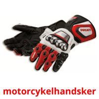 motorcykelhandsker picture flashcards