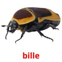 bille picture flashcards