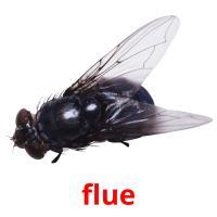 flue picture flashcards
