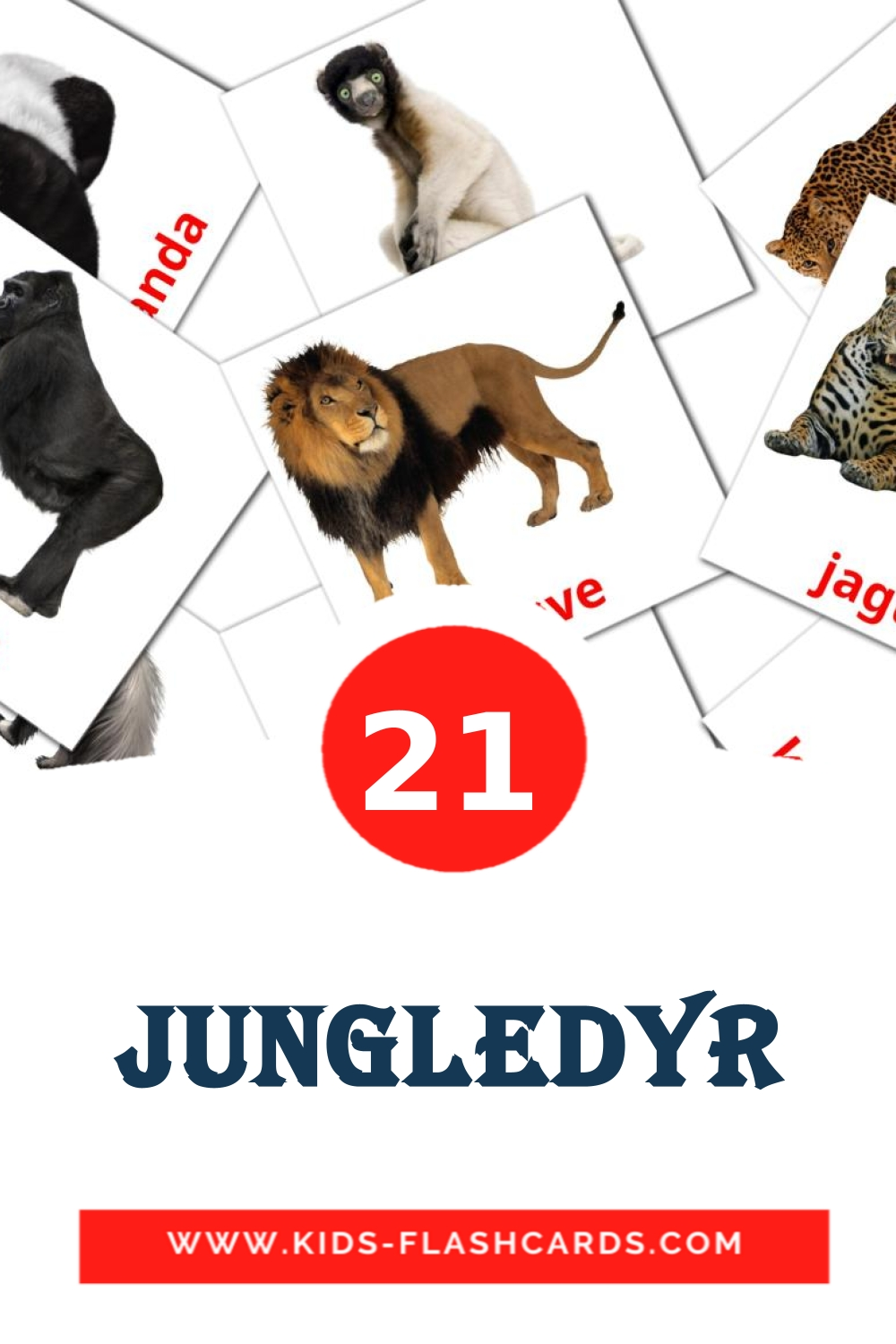 21 Jungledyr Picture Cards for Kindergarden in dansk