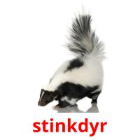 stinkdyr picture flashcards