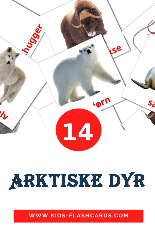 14 Arktiske dyr Picture Cards for Kindergarden in dansk