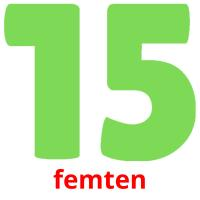 femten picture flashcards