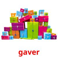 gaver picture flashcards