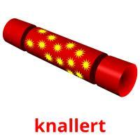 knallert picture flashcards